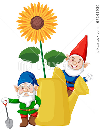 Gnomes with sunflower in watering can cartoon 67141930