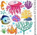 Set of sea creatures on white background 67142461