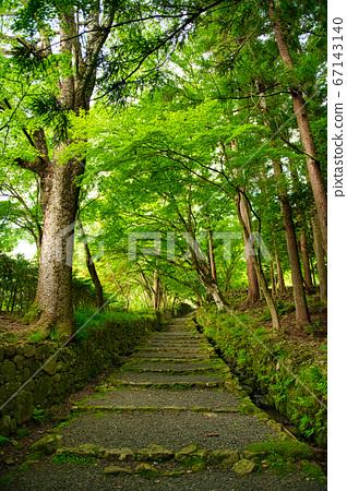 百済寺의 신록 67143140