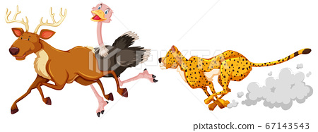 Leopard hunting ostriche and deer in cartoon 67143543