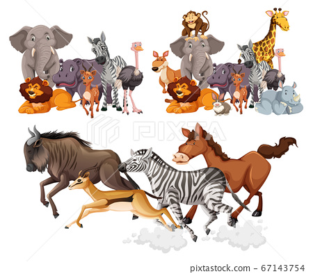 Wild animals group cartoon style isolated on white 67143754