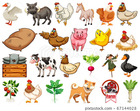 Set of farm animals 67144028