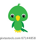 Cute baby parrot. Flat vector stock illustration 67144858