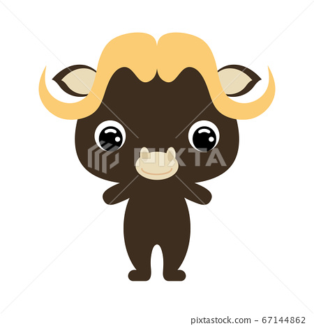 Cute baby musk ox. African animal. Flat vector 67144862