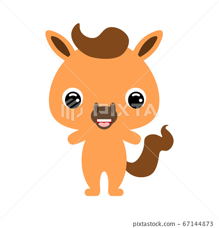 Cute baby horse. Domestic animal. Flat vector 67144873