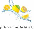 Fresh lemon and water splash on white background. 67148933