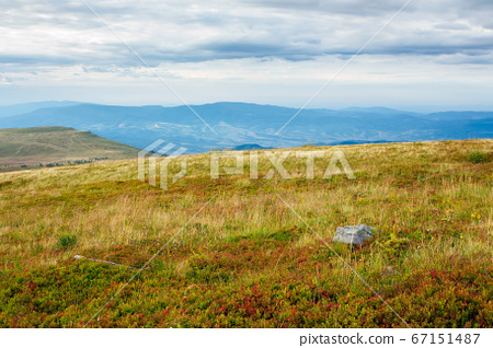 meadow in weathered grass. calm mountain landscape 67151487