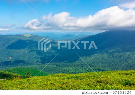 wonderful mountain landscape in summer. beauty of 67151524