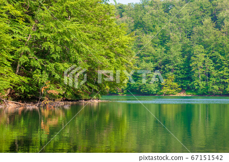 .reflection in the water. lake among the forest. 67151542