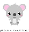 Cute little sitting koala. Flat vector 67177972