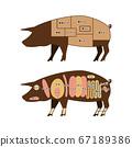 Pork part illustration 67189386