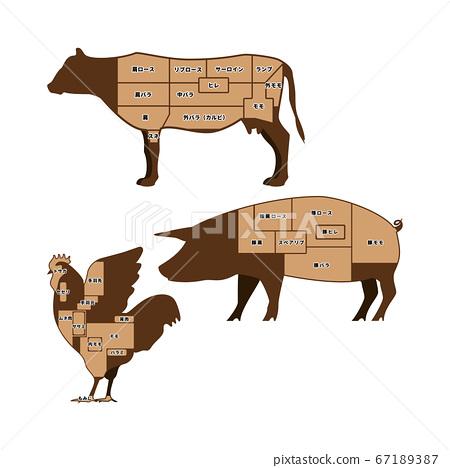 牛肉,豬肉,雞肉零件圖 67189387