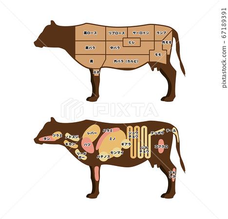 쇠고기 부위 일러스트 67189391