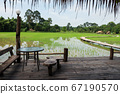 Wood balcony with rice farm view 67190570