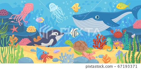 Underwater ocean life. Dolphin, exotic fishes and crab, squid. Bottom seaweeds, sea turtle and marine reef animals. Cartoon vector seascape 67193371