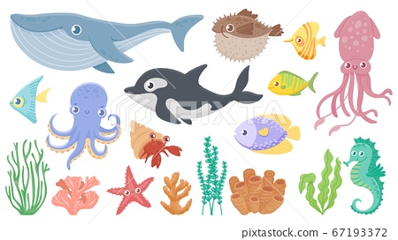 Cartoon ocean animals. Funny blue whale, cute hedgehog fish and orca. Octopus, squid and seahorse. Underwater sea life vector illustration set 67193372
