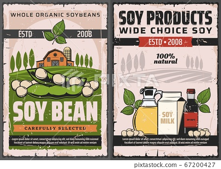 Soy and soybean products vector soya food posters 67200427