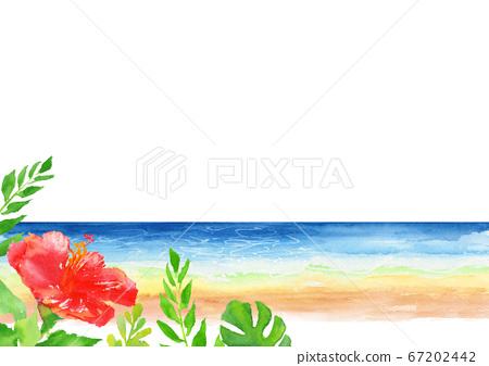 海芙蓉背景圖水彩 67202442