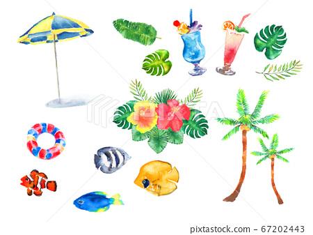 夏季熱帶樹葉手繪套裝水彩插圖熱帶棕櫚葉香蕉葉 67202443