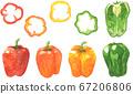 辣椒粉的水彩插圖 67206806