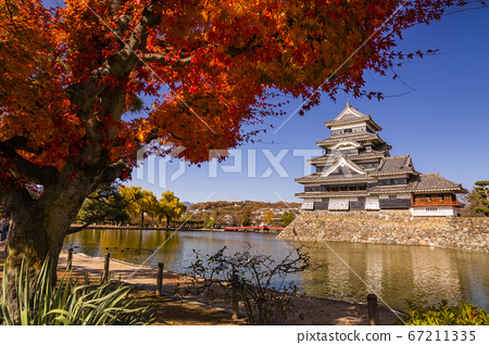 Matsumoto Castle in autumn, Matsumoto, Nagano Prefecture, Japan on morning 67211335