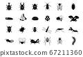 各种昆虫的剪影插图 67211360