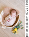 Cute little baby  with a toy bunny lies in a wicker basket decorated with greens and lemons in a beige knitted blanket. Summer mood. Happy healthy childhood 67217306