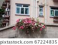 a Beautiful Decorative Colorful flower on Brick 67224835