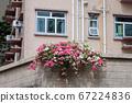 a Beautiful Decorative Colorful flower on Brick 67224836