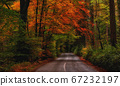 Cozy mountain road in golden autumn 67232197