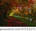 Cozy autumn trail with fiery tree crones 67232271