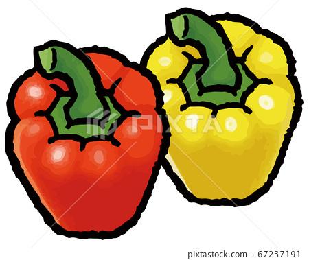 Hand drawn vector illustration of paprika 67237191