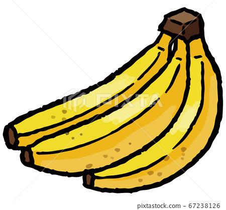 香蕉手繪矢量圖 67238126