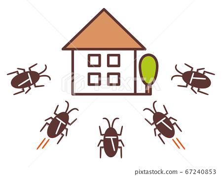 一群蟑螂入侵房屋 67240853