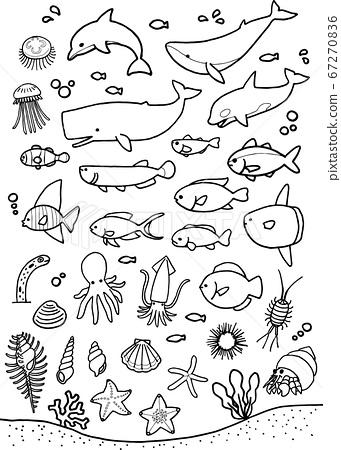 海洋生物(線條圖) 67270836