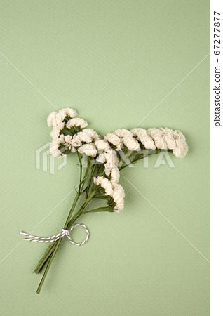 在綠色背景上的干燥花花束 67277877