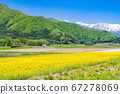(Nagano Prefecture) Scenery near Kamishiro Rape field 67278069