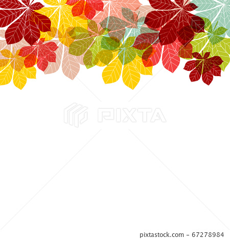 Abstract Autumn Leaves on white Background. Vector 67278984