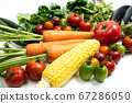 Green and yellow vegetables 67286050