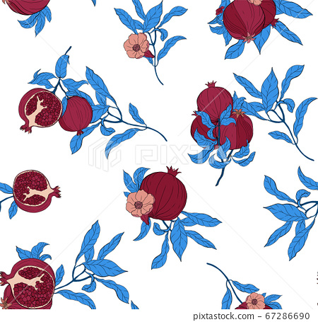 Vector seamless pattern with pomegranate fruits and seeds on white background. 67286690