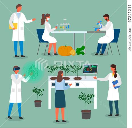 Set of laboratory workers, scientists exploring methods of growing natural bio plants, food 67295211
