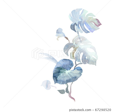 色彩豐富的花卉素材組合和設計元素 67298520