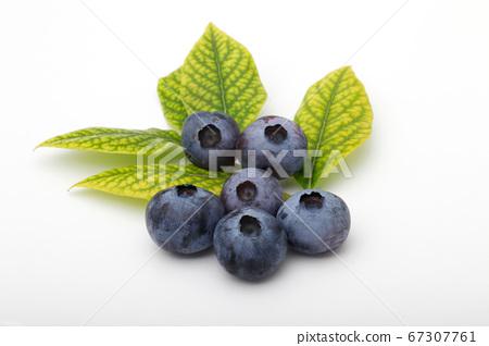 在白色背景上的藍莓 67307761
