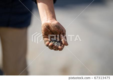 公園沙箱中抓了幾把沙子 67313475