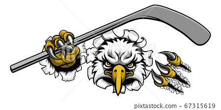 Eagle Ice Hockey Player Animal Sports Mascot 67315619