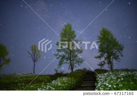 사계절의 고향 공원 67317168