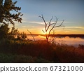 Driftwood against the background of a landscape with the sun rising, smart 67321000