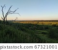 Driftwood against the backdrop of a beautiful natural landscape, smart 67321001
