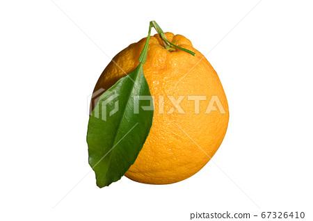 它是橘子的改良種,已去除了背景。 67326410