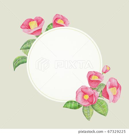 山茶花和圓形邊框 67329225